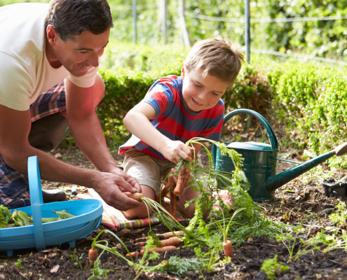 Gardening tips for back and body health